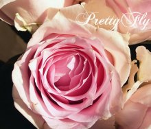 他の写真1: 【一種の花で束ねるシンプルブーケ】OnlyPinkRose〜ピンクのバラ花束