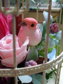 他の写真1: プリザーブドフラワー【バードガーデン★BirdGarden】ピンク