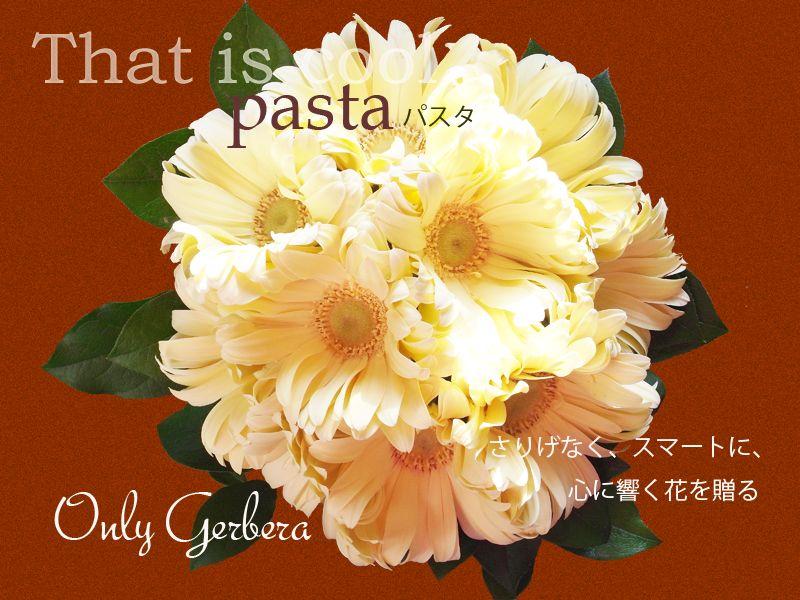 ガーベラパスタの花束