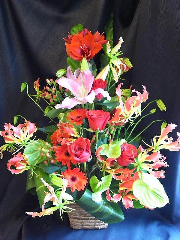 画像1: お祝いアレンジ-Oriental Red100