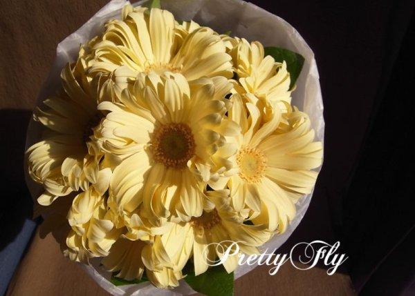 画像3: 【一種の花で束ねるシンプルブーケ】OnlyGerbera〜ガーベラ パスタの花束