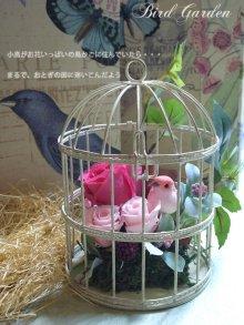 他の写真2: プリザーブドフラワー【バードガーデン★BirdGarden】ピンク