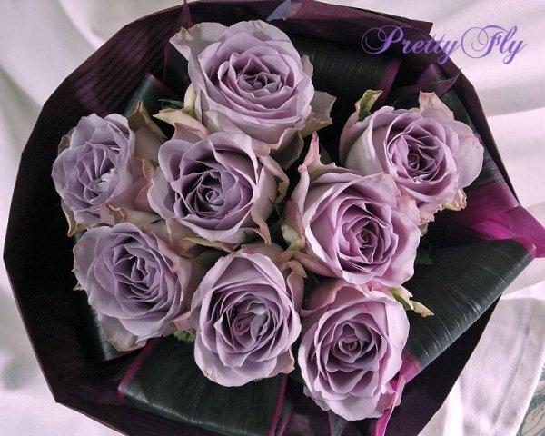 画像1: 【紫のバラ花束】パープルROSE '' PurpleROSE8 ''