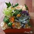 画像2: 【ボックスフラワーLサイズ】-Succulent多肉&Flower花 オレンジ (2)