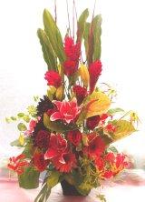 お祝いアレンジ-Oriental Red100