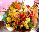 ブーケタイプ花束-オレンジバード50