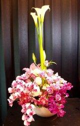 お祝いアレンジ-'Happy beauty'蘭&カラー250